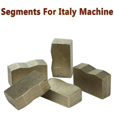 φ1000mm V-E01 1.0 Italy Machine Segments
