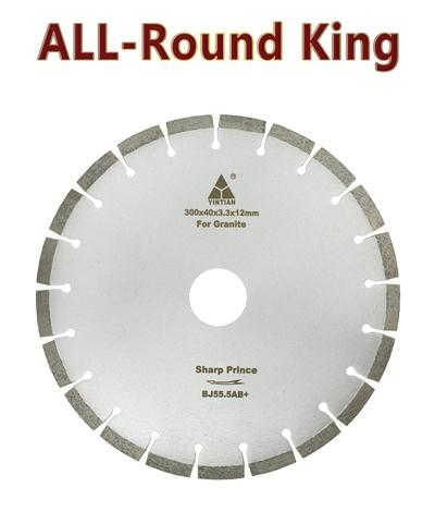 φ300mm granite saw blade SH100 20H Europe Allround King